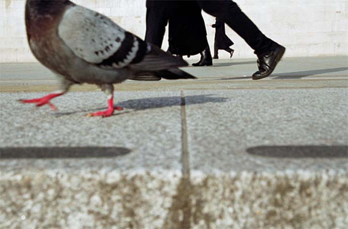 pigeonwalk Street Photography: What differentiates a good photo from a bad one?