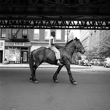 horse1 Vivian Maier   The Unknown Master Street Photographer