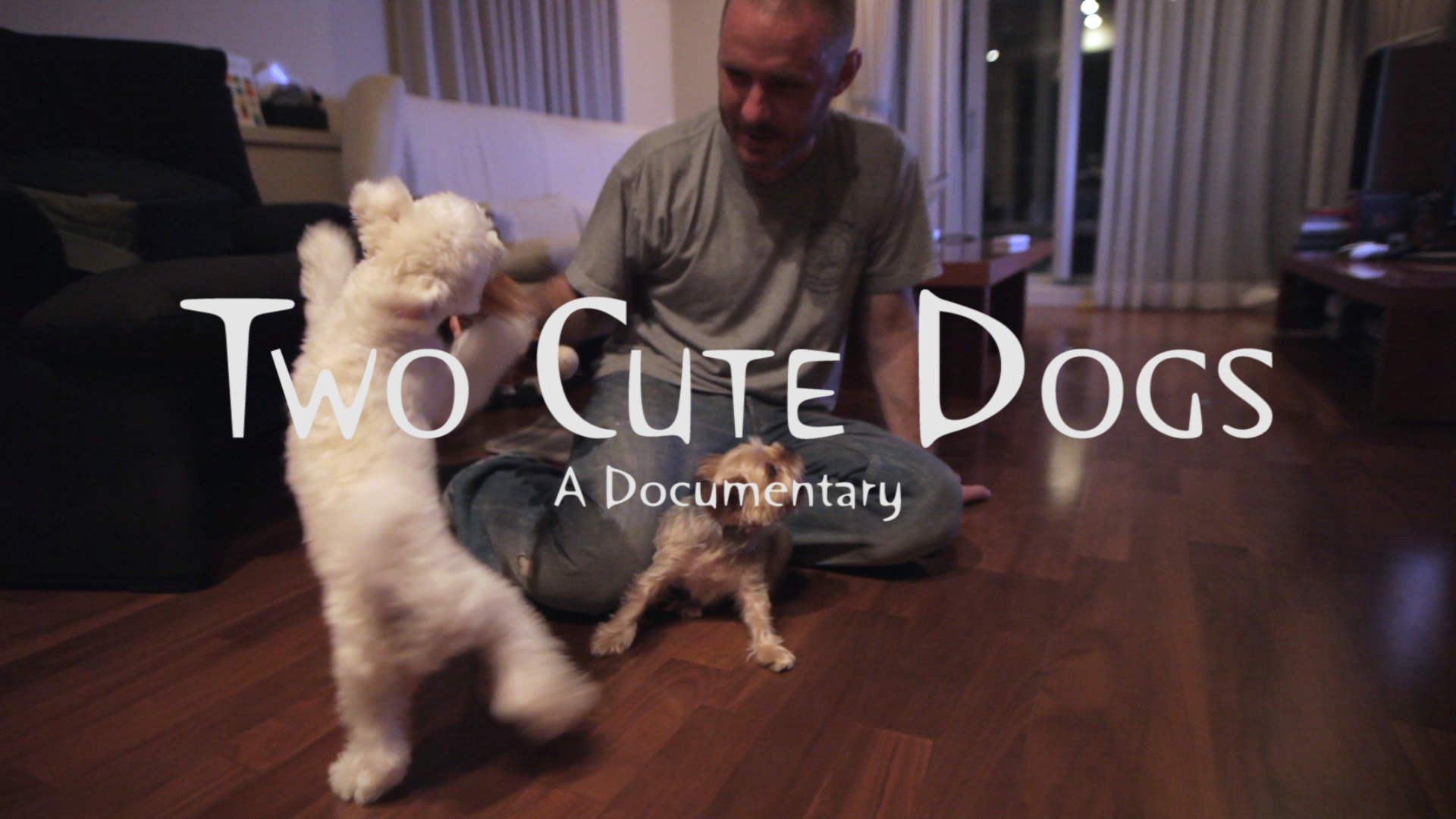 "TCD creditstill Charlie ""Two Cute Dogs"" Kirk – A Documentary"