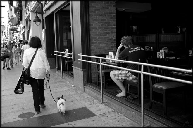 dog walker How I Shoot On The Street: An Application of Study and Practice by Brent Fong