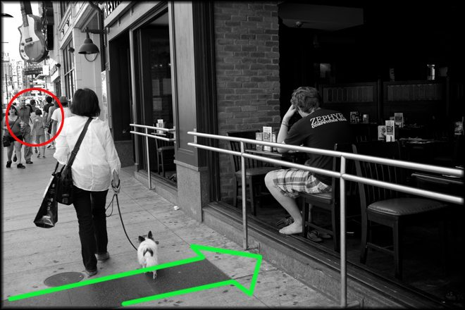dog walker4 How I Shoot On The Street: An Application of Study and Practice by Brent Fong