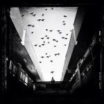koci04 zpsc61e722d 150x150 10 New Tips How to Master Shooting Street Photography With the iPhone