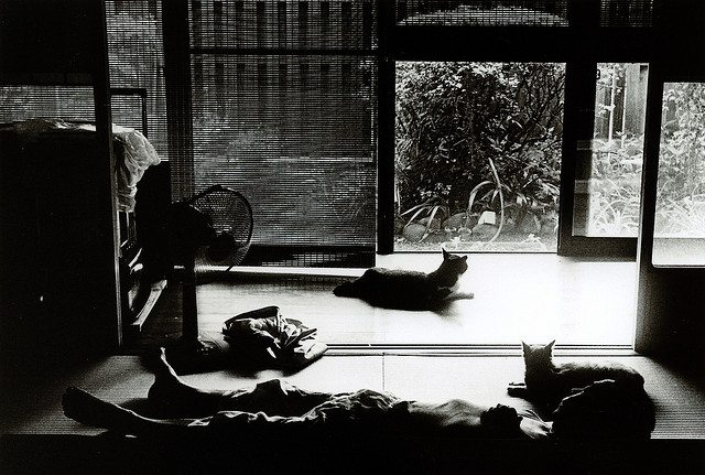 2778666345 a270bbb3e4 z The Nostalgic Black & White Photos of Japan: Interview with Street Photographer Junku Nishimura