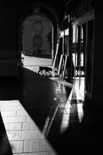 Mairie021012113 440x660 Capturing the Brilliant Light of Marseille: Street Photography by Yves Vernin