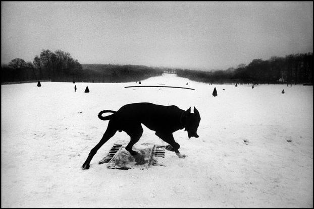 FRANCE. 1987. Region of Ile de France. The Hauts de Seine department. Parc de Sceaux. My Top 10 Street Photography Lists for 2013