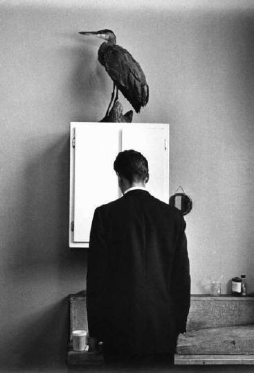Andre Kertesz The Heron 895 67 10 Lessons Andre Kertesz Has Taught Me About Street Photography