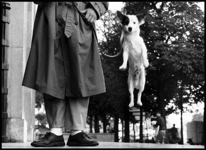 PAR116812 660x481 25 Practical Tips from Elliott Erwitt for Street Photographers