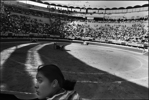 bullfight 2 copy Reflections on Tijuana by Eric Labastida