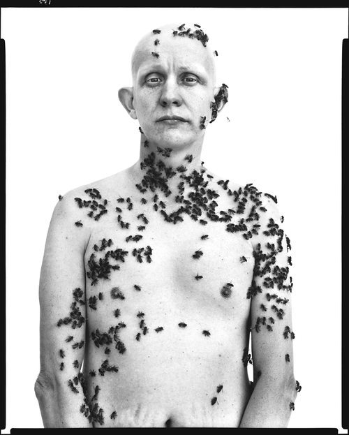Ronald Fischer beekeeper Davis California May 9 1981 engraver 5 Lessons Richard Avedon Has Taught Me About Street Photography